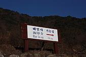 200901韓國大邱:IMG_1658.JPG
