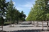 Drottningholm palace:IMG_6031.JPG
