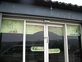 200711 銅鑼杭菊花:IMGP3957.JPG
