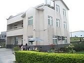 200711 銅鑼杭菊花:IMGP3999.JPG