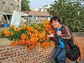 319-15台南西港穀倉餐廳:周圍散步-老屋砲杖花.JPG