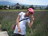 日本北海道自由行:090富田花園農場.jpg