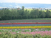 日本北海道自由行:096富田花園農場.JPG