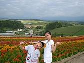日本北海道自由行:189四季彩之丘.jpg