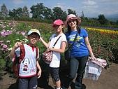 日本北海道自由行:109富田花園農場.jpg