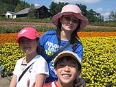 日本北海道自由行:120富田花園農場.jpg