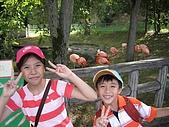 日本北海道自由行:052旭川動物園.jpg