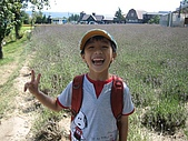 日本北海道自由行:133富田花園農場.jpg