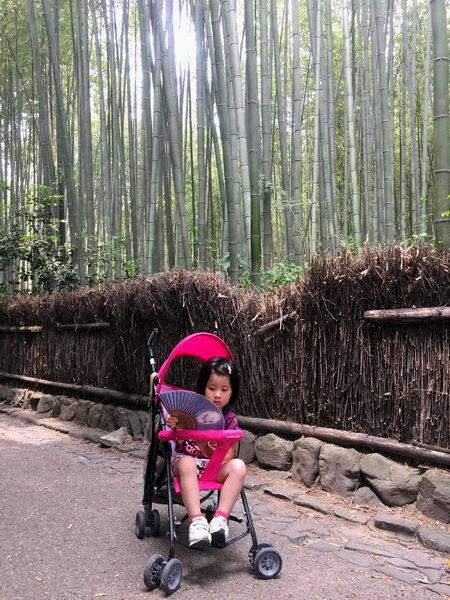 嵐山天龍寺:嵐山竹林7