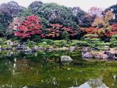 大濠公園日本庭園:大濠公園日本庭園