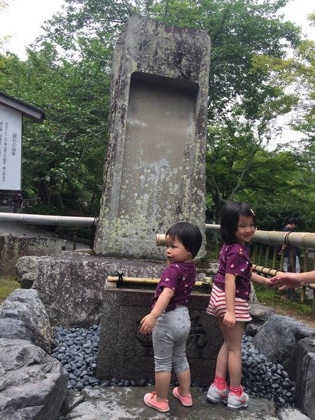 嵐山天龍寺:嵐山天龍寺2
