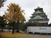 秋遊大阪城公園:秋遊大阪城公園