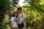 峇里島蜜月行五日遊:峇里島蜜月行五日遊 274.jpg
