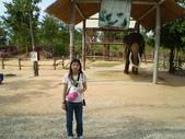 泰國之旅:1519911741.jpg