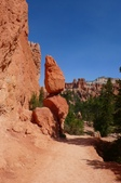 2011 WAT   照片分享:Bryce canyon.jpg