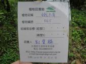 101.03.11 植樹在雙溪:1573697529.jpg