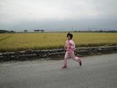 102.11.17 池上馬拉松:DSC01991.JPG