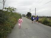 102.11.17 池上馬拉松:DSC01986.JPG