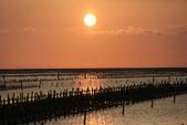 台南沿海生態、鹽田風光與落日:074A4517.JPG