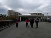 日本賞楓九天 Day9-東京都昭和公園~成田機場 :IMG_6580.JPG