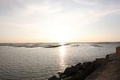 台南沿海生態、鹽田風光與落日:074A4483.JPG