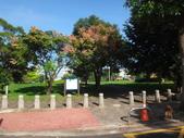 平鎮復興親子公園秋天的花草樹木:DSC05831復興親子公園.JPG