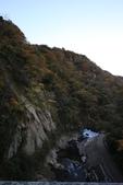 日本賞楓九天 Day6--東北-鳴子峽 :IMG_8942.JPG