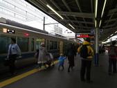 日本賞楓九天 Day8-東京都:IMG_5657.JPG