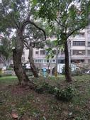 105年教師節+梅姬颱風:DSC04924.JPG