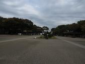 日本賞楓九天 Day9-東京都昭和公園~成田機場 :IMG_6581昭和公園.JPG