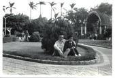 夫妻今生甜蜜相伴43載:651205台北植物園.jpg