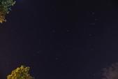 雙溪清晨星空與鳥類:074A4963.JPG