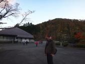 日本賞楓九天 Day6--東北-鳴子峽 :DSC01785.JPG