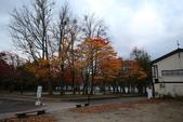 日本賞楓九天Day3--東北-十和田湖~燒山 :IMG_8075.JPG