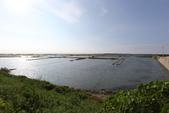 台南沿海生態、鹽田風光與落日:074A4354.JPG