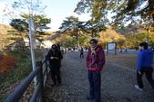 日本賞楓九天 Day6--東北-鳴子峽 :IMG_8885.JPG
