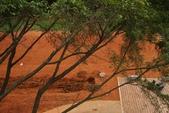 復旦-新天母公園:100.4.12鋪上一層紅土