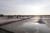 台南沿海生態、鹽田風光與落日:074A4407.JPG
