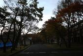 日本賞楓九天Day3--東北-十和田湖~燒山 :IMG_8082.JPG