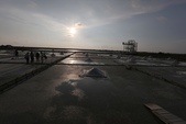 台南沿海生態、鹽田風光與落日:074A4415.JPG