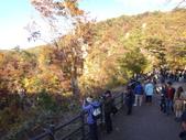 日本賞楓九天 Day6--東北-鳴子峽 :DSC01717.JPG