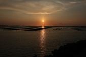 台南沿海生態、鹽田風光與落日:074A4504.JPG