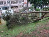 105年教師節+梅姬颱風:DSC04915.JPG
