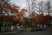 日本賞楓九天Day3--東北-十和田湖~燒山 :IMG_8079.JPG
