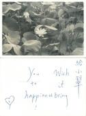 夫妻今生甜蜜相伴43載:651204川手寫祝福語.jpg