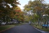 日本賞楓九天Day3--東北-十和田湖~燒山 :IMG_8083.JPG