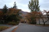 日本賞楓九天Day3--東北-十和田湖~燒山 :IMG_8077.JPG