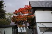 日本賞楓九天Day3--東北-十和田湖~燒山 :IMG_8084.JPG