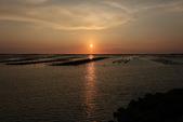 台南沿海生態、鹽田風光與落日:074A4511.JPG