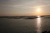 台南沿海生態、鹽田風光與落日:074A4487.JPG